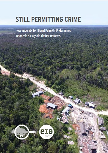 Illegal Oil Palm and Impunity Still Undermining Indonesia's Flagship Timber Reforms