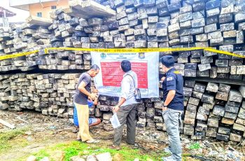 Gakkum KLHK confiscated 11 Illegal Wood Containers from Buton in East Lombok worth IDR 3.5 Billion