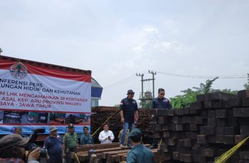 Directorate General of Law Enforcement Again Secures 38 Containers Containing Illegal Timber from