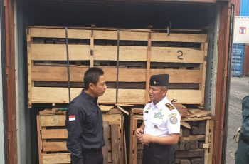 KLHK Law Enforcement Directorate General Collaborate with Bakamla to Secure 2 Ebony Wood Containers