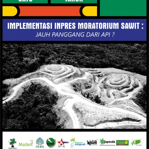 One Year of Palm Oil Instruction Implementation