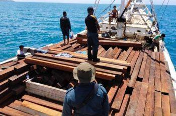 Gakkum KLHK Detains Illegal Loggers in Raja Ampat