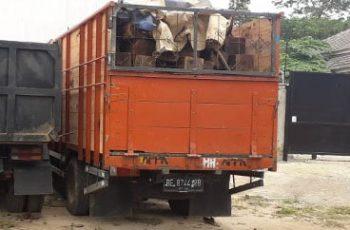 KLHK Arrests Fugitive Sonokeling Timber financiers Illegal